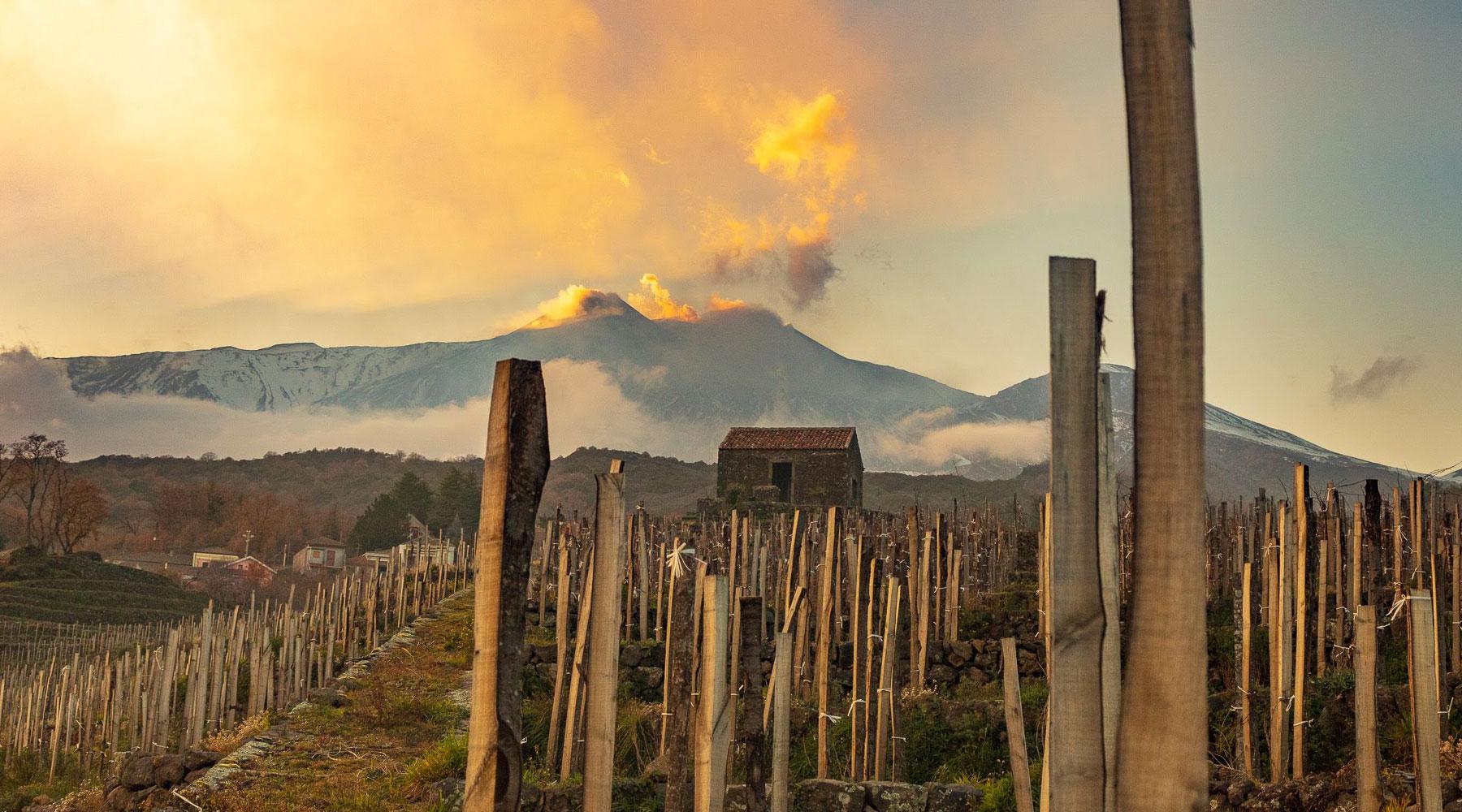 Benanti Viticoltori – Carattere etneo dal 1734